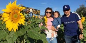 ¡Vámonos! | Inauguran Campo de Girasoles en Mocorito