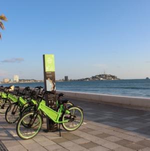 """Las bicis de """"Muévete Chilo Sinaloa"""" suman más de 141 mil viajes en su primer año"""