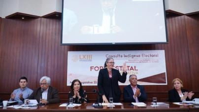 Con consulta haremos justicia a pueblos indígenas: Graciela Domínguez