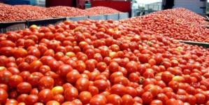 Comercio exterior   Balanza comercial agroalimentaria muestra saldo positivo