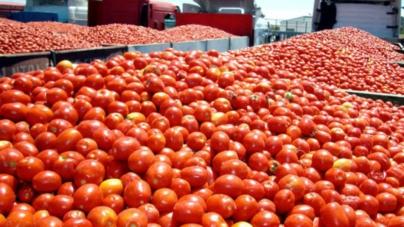 Comercio exterior | Balanza comercial agroalimentaria muestra saldo positivo