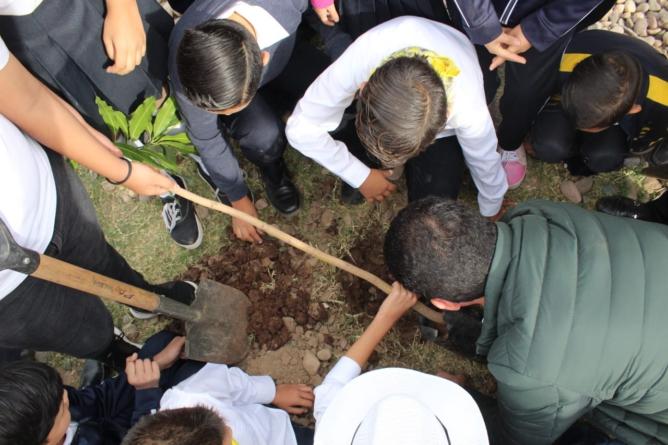 Pulmones escolares | Reforestarán escuelas de educación básica en Sinaloa