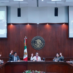 Por Covid-19 Congreso pausa selección de nueva titular del Ismujeres