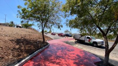 El peatón primero | Instalan cruce peatonal en la avenida Álvaro Obregón