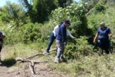 Las Rastreadoras de El Fuerte localizaron a cuatro personas enterradas en fosas clandestinas en Los Mochis FOTO: Cortesía